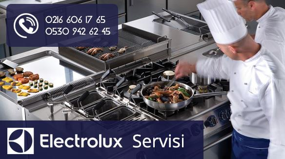 Electrolux Servisi